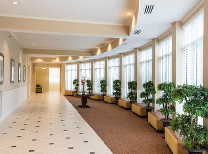 Banquet Hallway with Plants and Windows