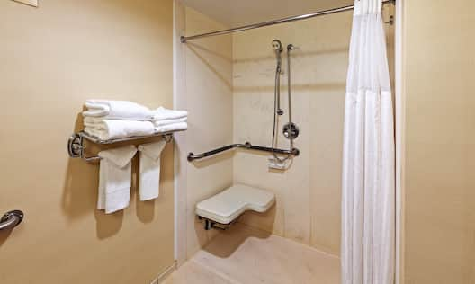 Roll-In Shower with Shower Seat, Grab Bars, and Handheld Showerhead in Accessible Suite Bathroom
