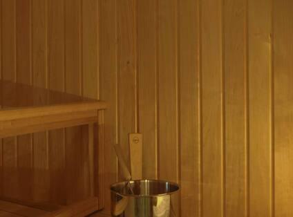 In- Room Sauna
