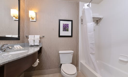 Vanity Mirror, Sink, Towels, Amenities, Wall Art Above Toilet and Bathtub
