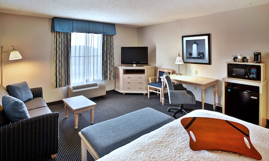1 King Bed Studio Suite