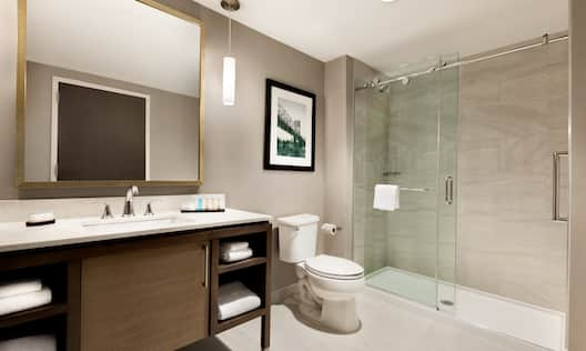 Guest Bathroom with Vanity, Toilet and Walk-In Shower