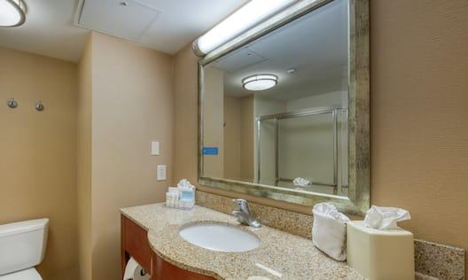 Guest Bathroom Vanity and Toilet