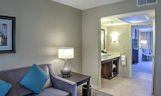 Accessible Mobility/Hearing King Suite Bathroom