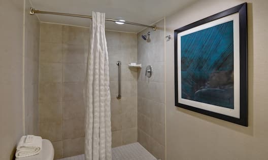 guest bathroom with shower