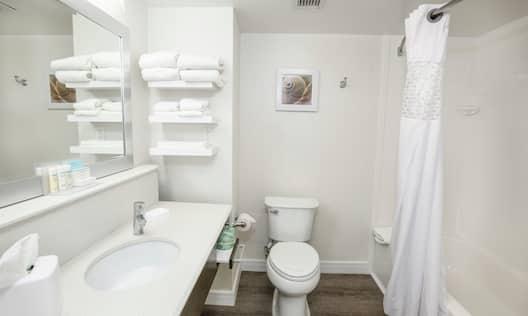 Hotel Guestroom Bathroom