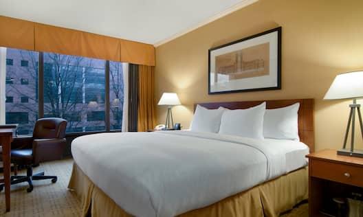Single Queen Bed Guestroom