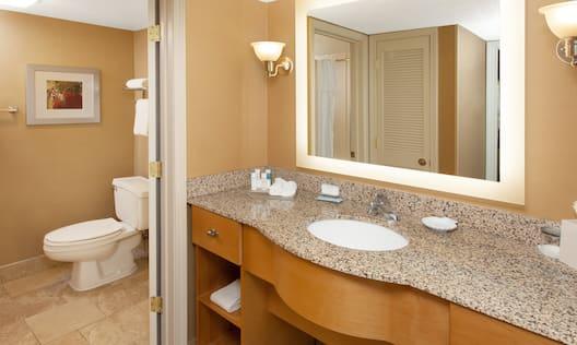 Bathroom Vanity with Ameneties