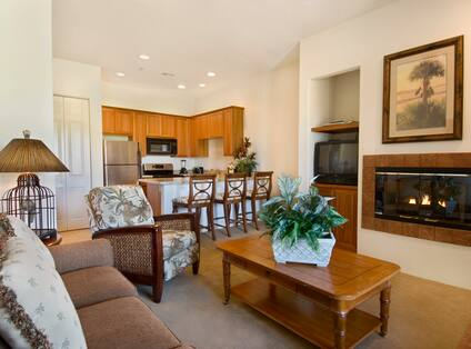 Living Room with Sofa, Armchair, Coffee Table, Bird Cage Lamp, Fireplace, Framed Artwork, TV, and View of Kitchen with Bar, Stools, Stainless Steel Refrigerator, Stove, Microwave, Blender, Potted Plants, and Wood Cabinets