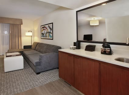 Suite with Lounge Area and Wet Bar