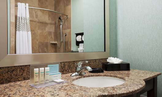 Guest Bathroom Sink, Mirror and Shower