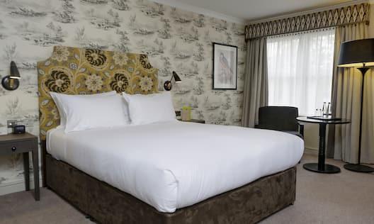 Queen Bed in Accessible Room