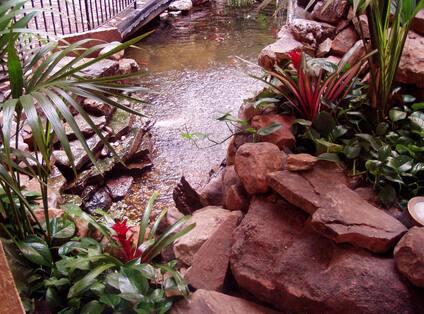 Atrium With Waterfall and Koi Pond