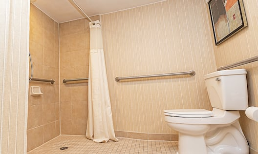 a bathroom with a roll-in shower