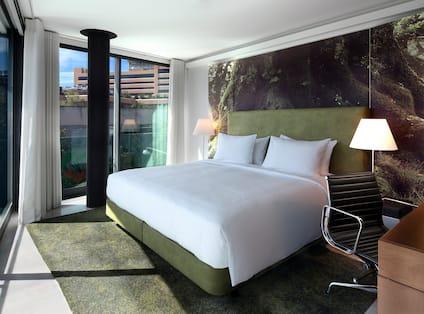 King Panoramic Room