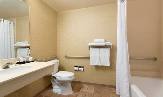 Accessible Toilet and Bathtub with Handrails