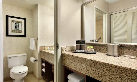 Standard Bathroom Vanity Area with Large Mirror
