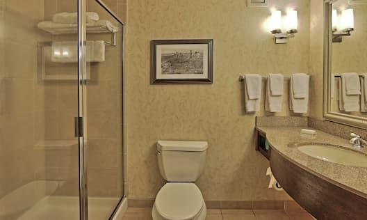 Standard Guestroom Bathroom with Shower