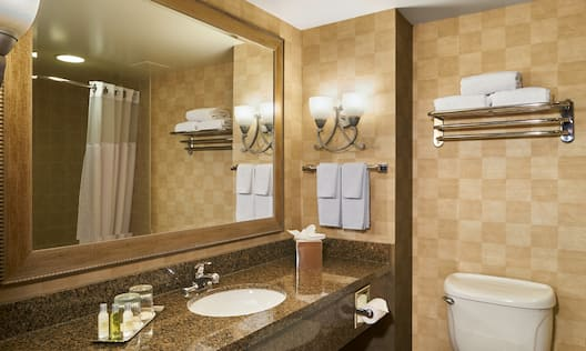 Accessible Guest Bathroom with Mirror and Vanity