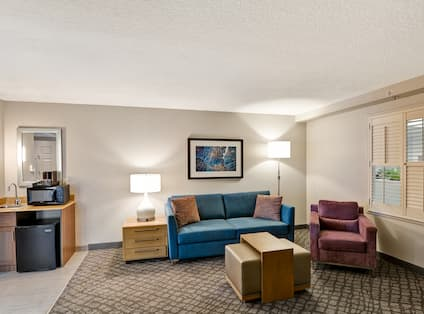 Suite Living Room with Lounge Seating and Wet Bar Kitchen with Microwave and Mini Fridge