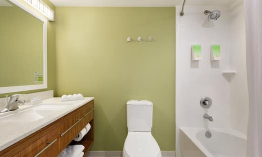 Bathroom in a Guest Room