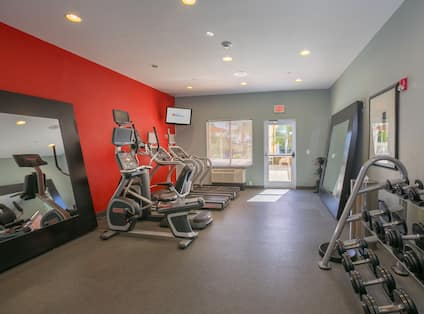 Fitness Center with Cross-Trainer, Treadmills and Dumbbell Rack