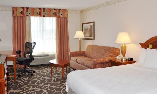 Queen Bed Hotel Guestroom
