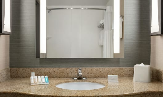 King Guestroom Bathroom with Mirror, Vanity, Shower, and Bathtub