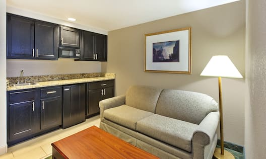 Hampton Inn Marietta Hotel, OH - Studio Kitchenette and Living Area