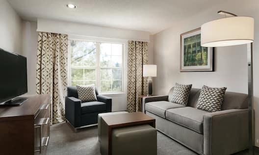 living area with comfortable seating and tv