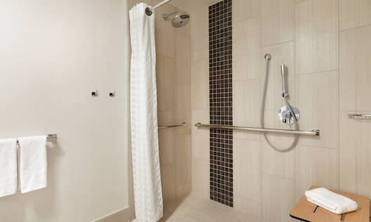 Accessible Bathroom with Roll-In Shower