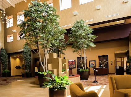 Plants and Fountain with Seating in Lobby Atrium