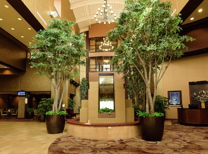 Plants and Fountain in Lobby Atrium