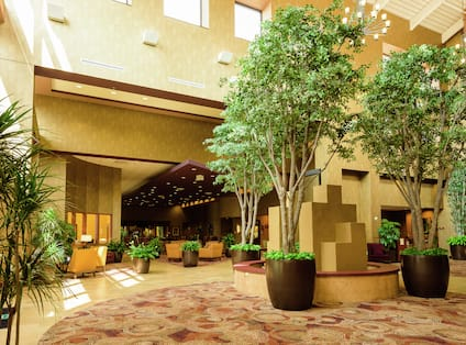 Trees and Seating Inside the Atrium