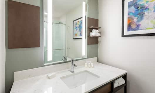 King Guestroom Vanity with Shower in Reflection of Mirror