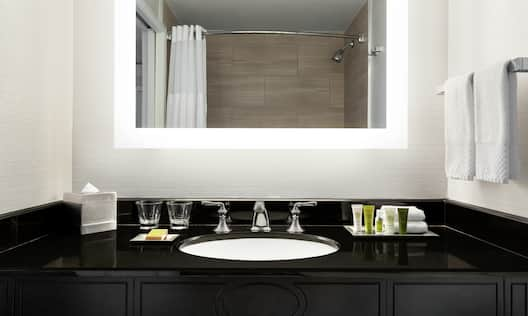Bathroom Vanity Area with Amenities