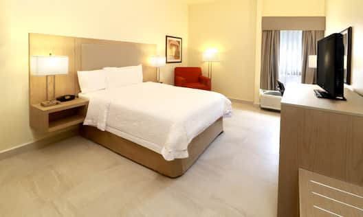 Accessible Guestroom with Bed, Lounge Chair and Television