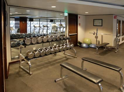 Gym Weights Area