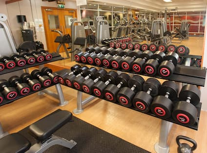 Free Weights, Weight Machines, and Mirrored Wall in LivingWell Gym