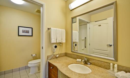 Suite Bathroom With Open Doorway to Bathtub and Over Toilet, Large Vanity Mirror, Fresh Towels, Sink, and  Amenities,