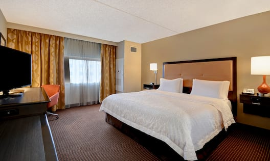 guest room with king bed and outside view