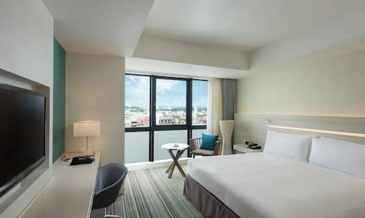 King Guest Room with City View