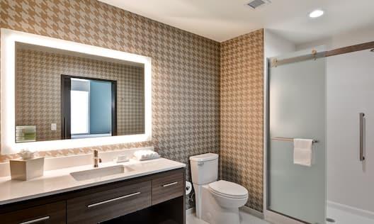 Guest Bathroom Vanity Mirror Sink Toilet and Walk-In Shower