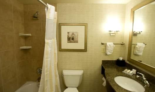 2 Queen Beds Bathroom