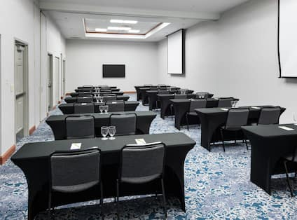 Presentation Room With Projector Screens