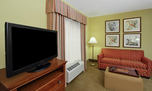 Studio Suite Living Area with Cozy Sofa and HDTV