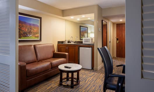 Suite Living Area With Entry, Ergonomic Chair, Coffee Table, Wall Art Above Sofa,  Large Mirror Above Wet Bar With Microwave and Mini Fridge
