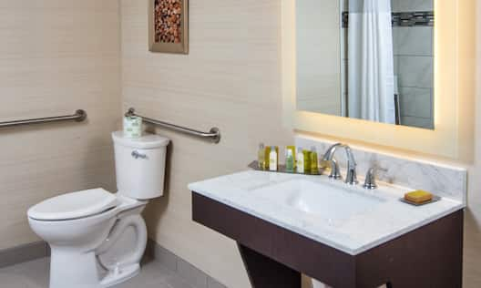 Accessible Guest Bathroom Vanity and Toilet