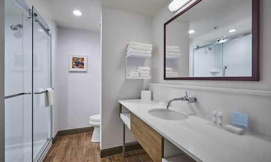 Vanity and Walk-in Shower in Guest Bath