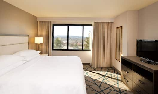 Guestroom with King Bed, Television and Outside View